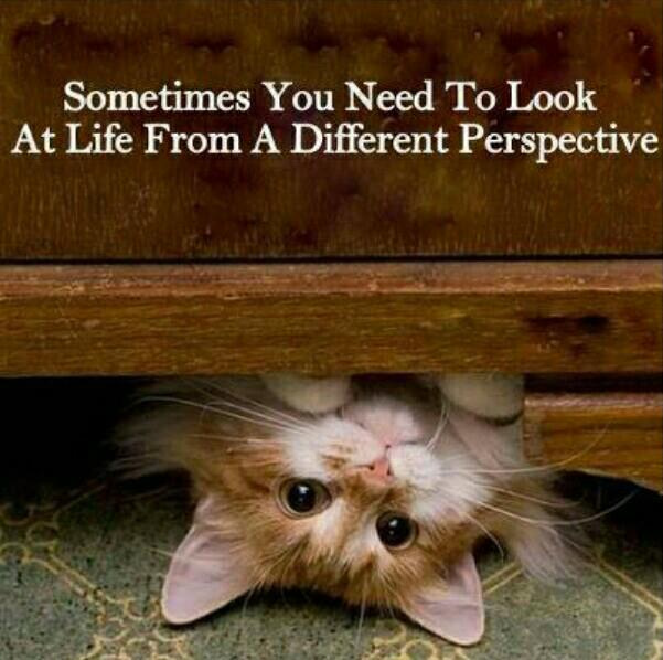 a-different-perspective
